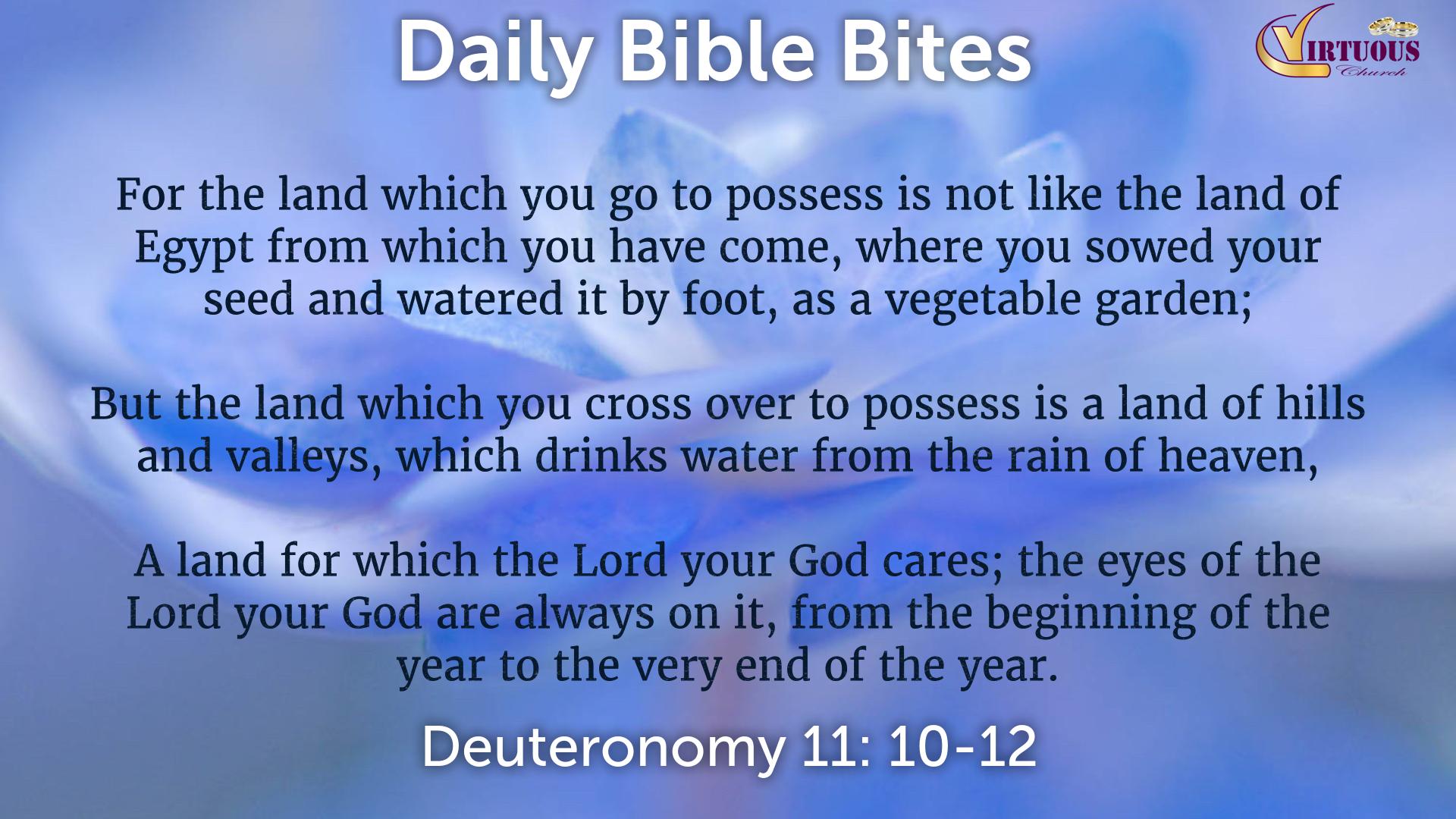 Daily Bible Bites 2